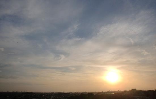 20100209_1.jpg